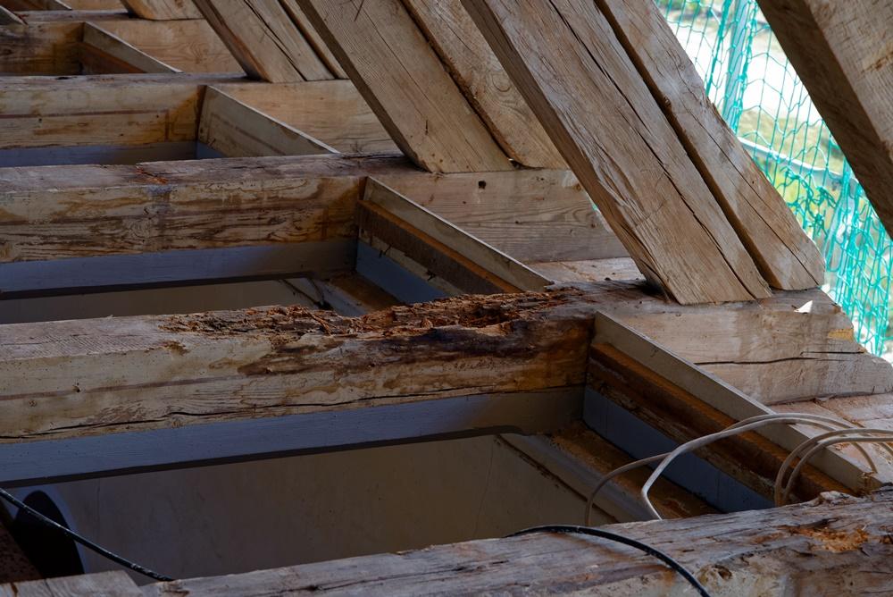 Hier haben gleich mehrere Holzfeinde zugeschlagen - Nässe, Kälte, die Zeit und der Holzwurm!