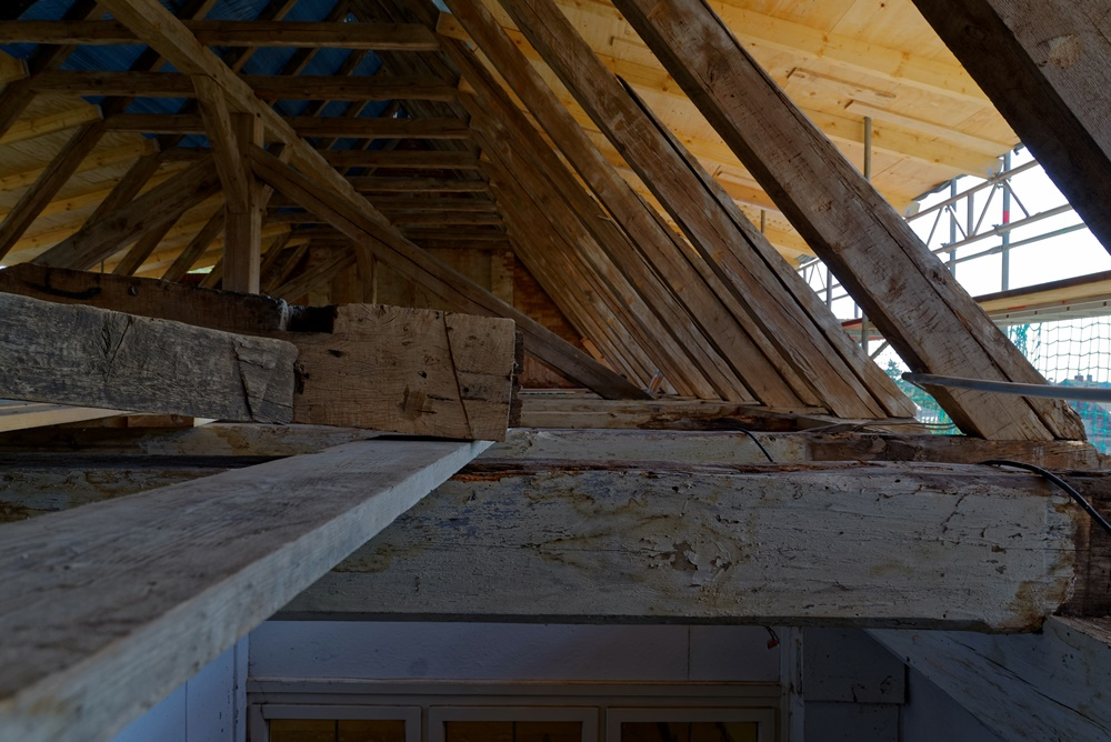 Manchem Balken im Dachstuhl sieht man sein Leiden deutlich an!