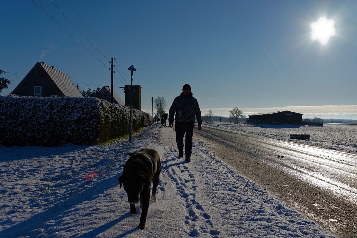 Willi führt sein Chef spazieren.