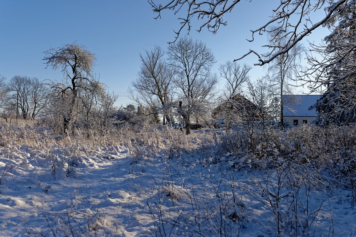 Winter Wunderwelt