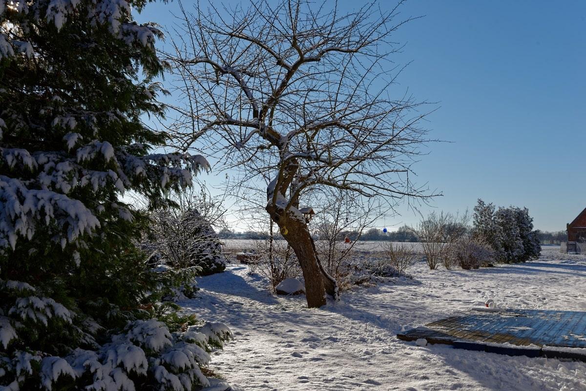 Winter in Wegezin