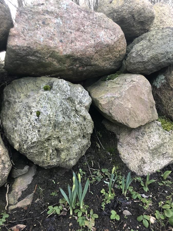 Natursteine 30