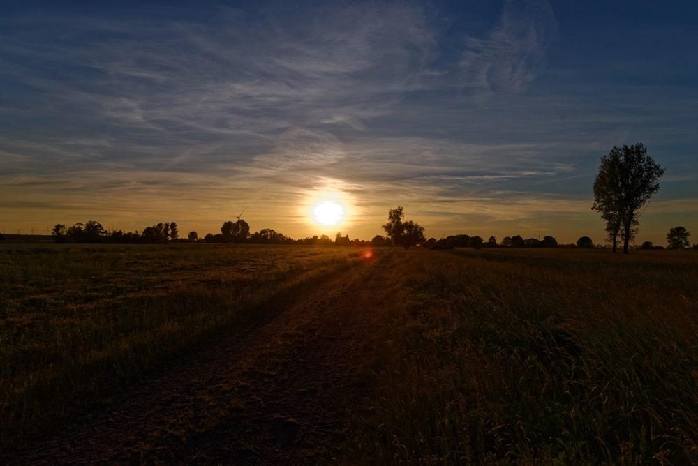Wegezin im Licht der Abendsonne vom Spantekower Weg